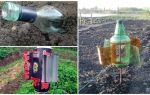 Cum să înlăturați mola din grădină sau grădină