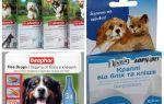 Soluții pentru băștinași și căpușe pentru câini