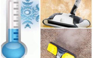 Cum să scapi de insecticide de purici de covoare și de mijloace improvizate