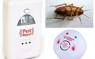 Repellenă electronică de gândaci