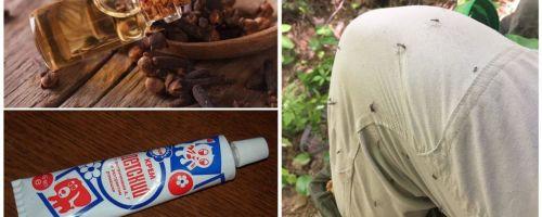 Remedii populare pentru țânțarii