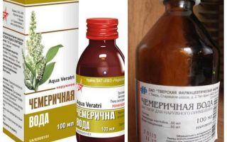 Apă Chemerichnaya de la păduchi și nits metoda de aplicare