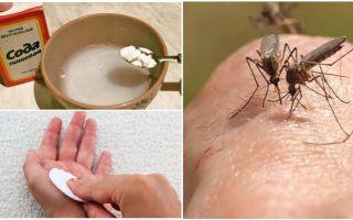 Mosquito mușcă soluție de sodă pentru copii și adulți