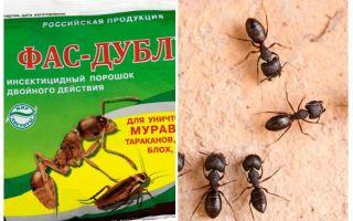 Înseamnă Fas-Double de la furnici