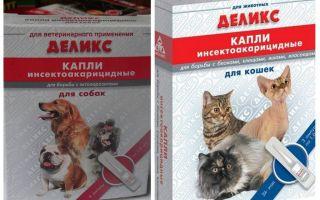 Delicios picături de purici pentru pisici și pisici