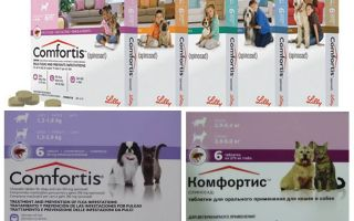 Comprimate de mestecat pentru câini și pisici
