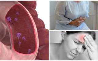 Cum se determină prezența Giardia în corpul uman