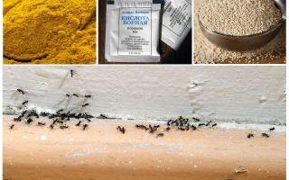 Fonduri de la furnici în casa din țară