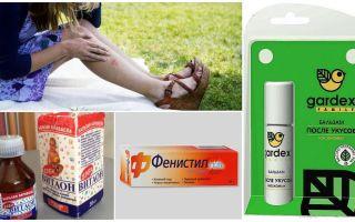 Ce să faceți cu mușcăturile de țânțari nu vă deranjează