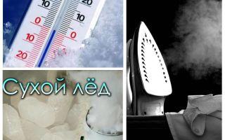 La ce temperatură mor gandacii și larvele lor?