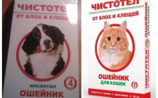 Flanșă pentru pisici și câini