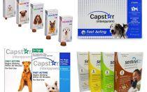 Tablete pentru purici și căpușe pentru câini
