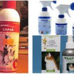 Spray-uri de spray cu pisici