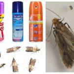 Spray-uri de molii
