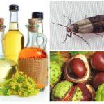 Castane și uleiuri esențiale
