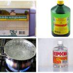 Remedii pentru gândacul de coajă