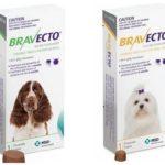 Tablete Bravecto