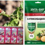 Produse chimice pentru distrugerea gândacului de cartof Colorado
