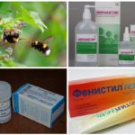 Tratamentul pentru muscatura de insecte