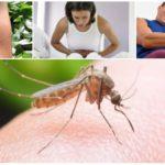 Consecințele mușcăturii de țânțari malarice